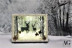 Quadretto  invernale con led