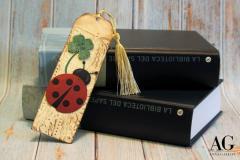 Segnalibro coccinella e quadrifoglio fatto a mano